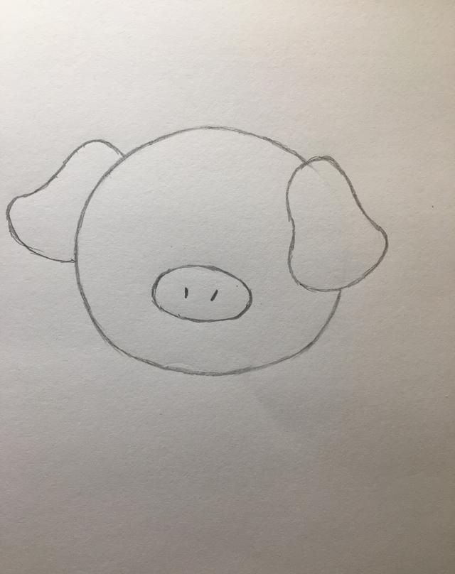 「简笔画」——小猪的画法