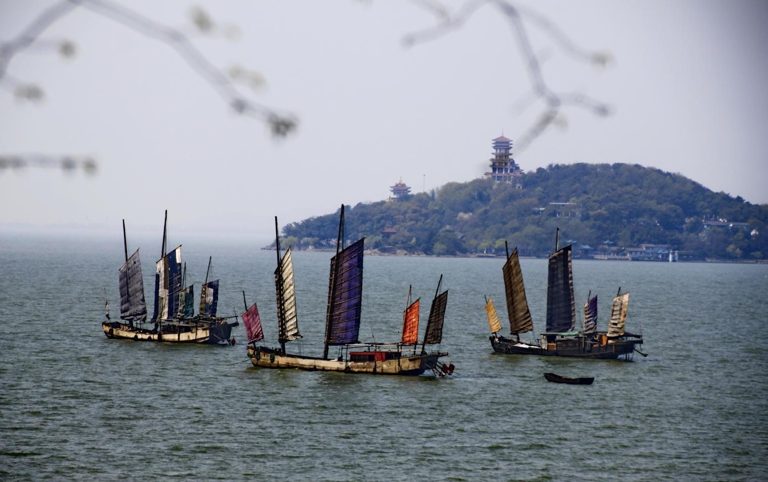 青岛最有望超苏州的经济,景点追南京,攻略超南京,逃票江苏城市不是交通图片