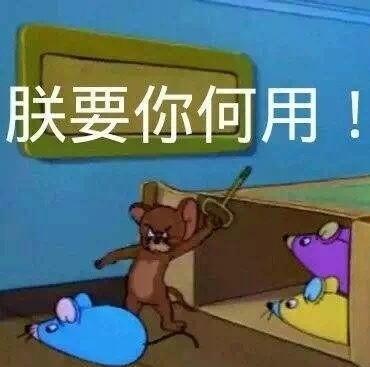 猫和老鼠带字搞笑图片的表情五个字搞笑励志的图片