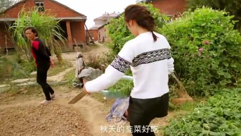 小周菜地v菜地农村农家去韭菜割韭菜美女长得真頭乳美女图片