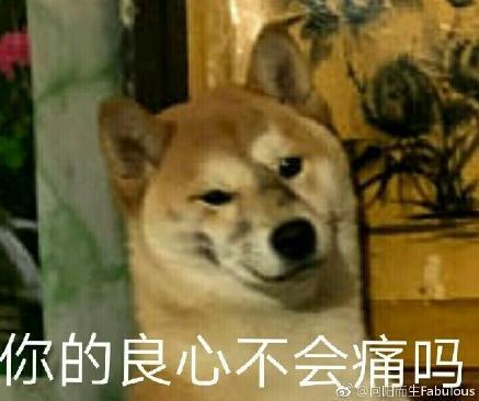 狗子的正确用法表情包 狗子的正确用法是什么很搞笑图片