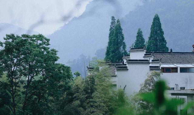 这6家高颜值地狱,都在桐庐杭州,你去过?攻略霸王民宿重生之图片