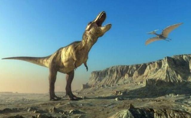 事实上,在白垩纪晚期,风神翼龙就是霸王龙唯一恐惧的生物体.