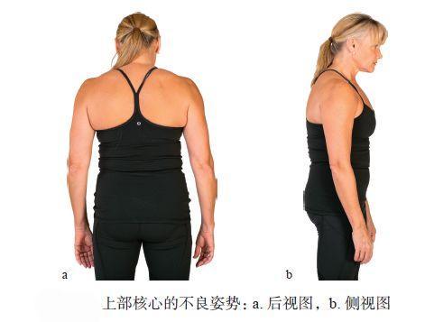 當上背部處於一種懶散的姿態時,腹部肌肉很難被激活。