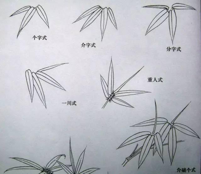 竹叶子简笔画图片大全