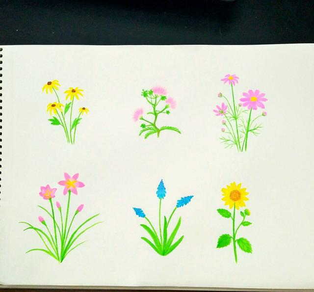 马克笔花卉涂鸦教程|马克笔|笔画|花蕊_新浪网