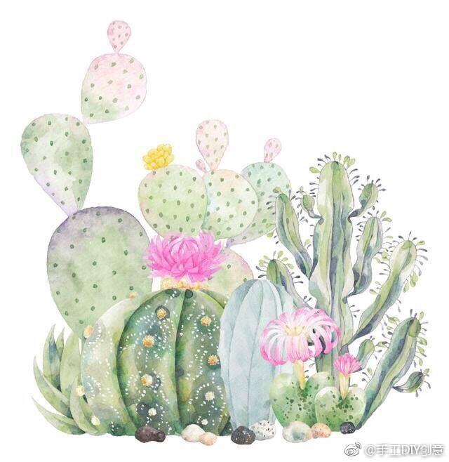 水彩手绘植物仙人掌花卉