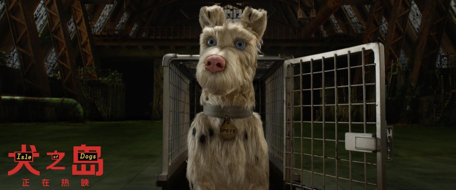 流浪狗遭遇现实版《犬之岛》 造梦大师韦斯·安德森新片获好评