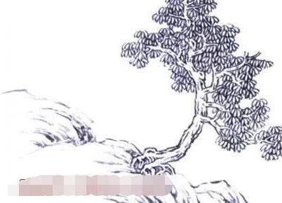 中国画画法教程之怎样画杂树,树木的结构及作画步骤