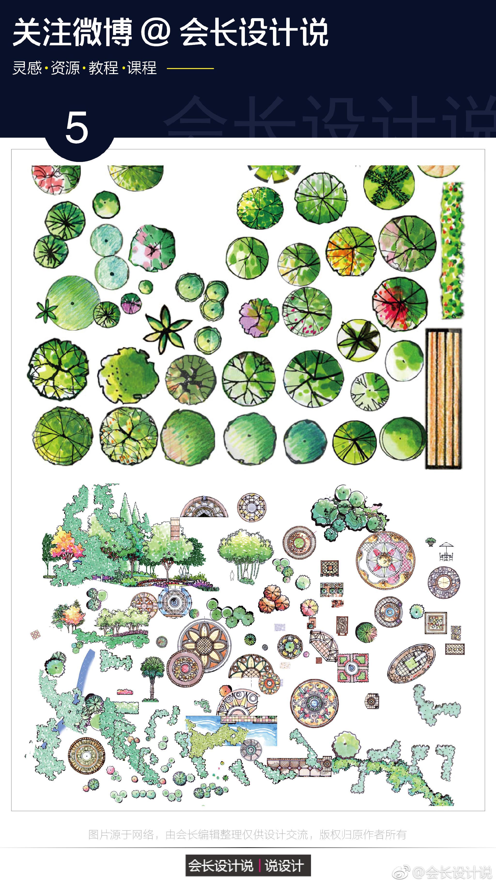手绘植物,人物素材集合   (下载链接见评论区)