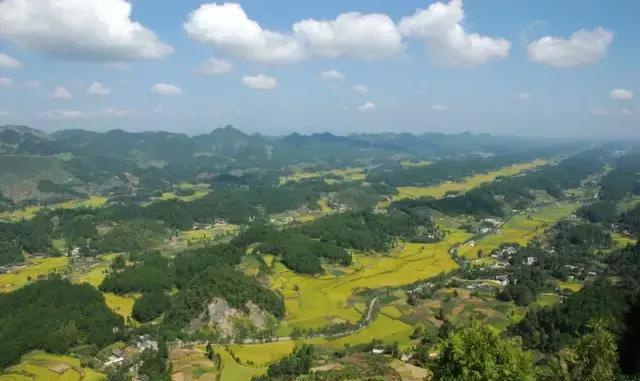 凤冈县的省级森林公园,位于凤冈县西南面,是典型的山岳型风景旅游区.