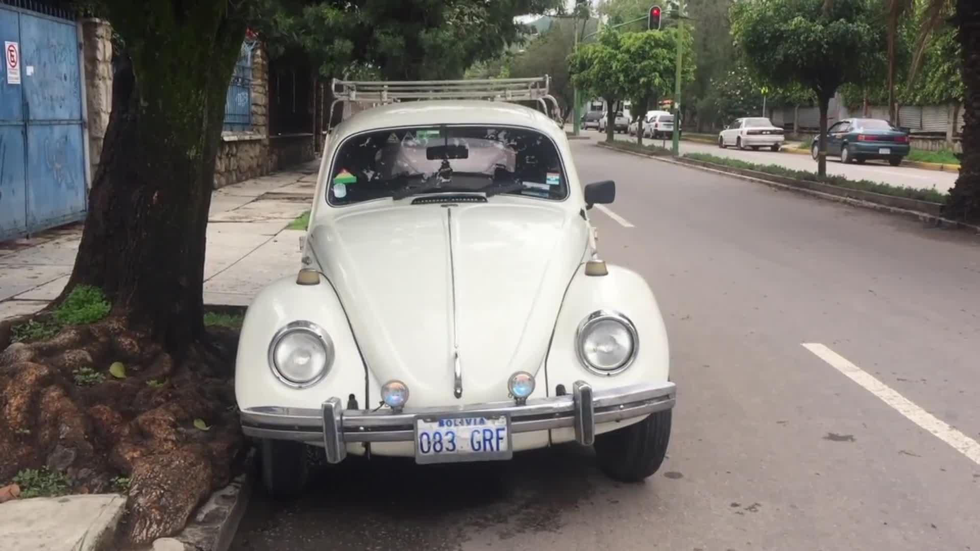 这么多甲壳虫,您们喜欢哪一款呢?(甲壳虫,大众最经典车之一,20世纪最具...