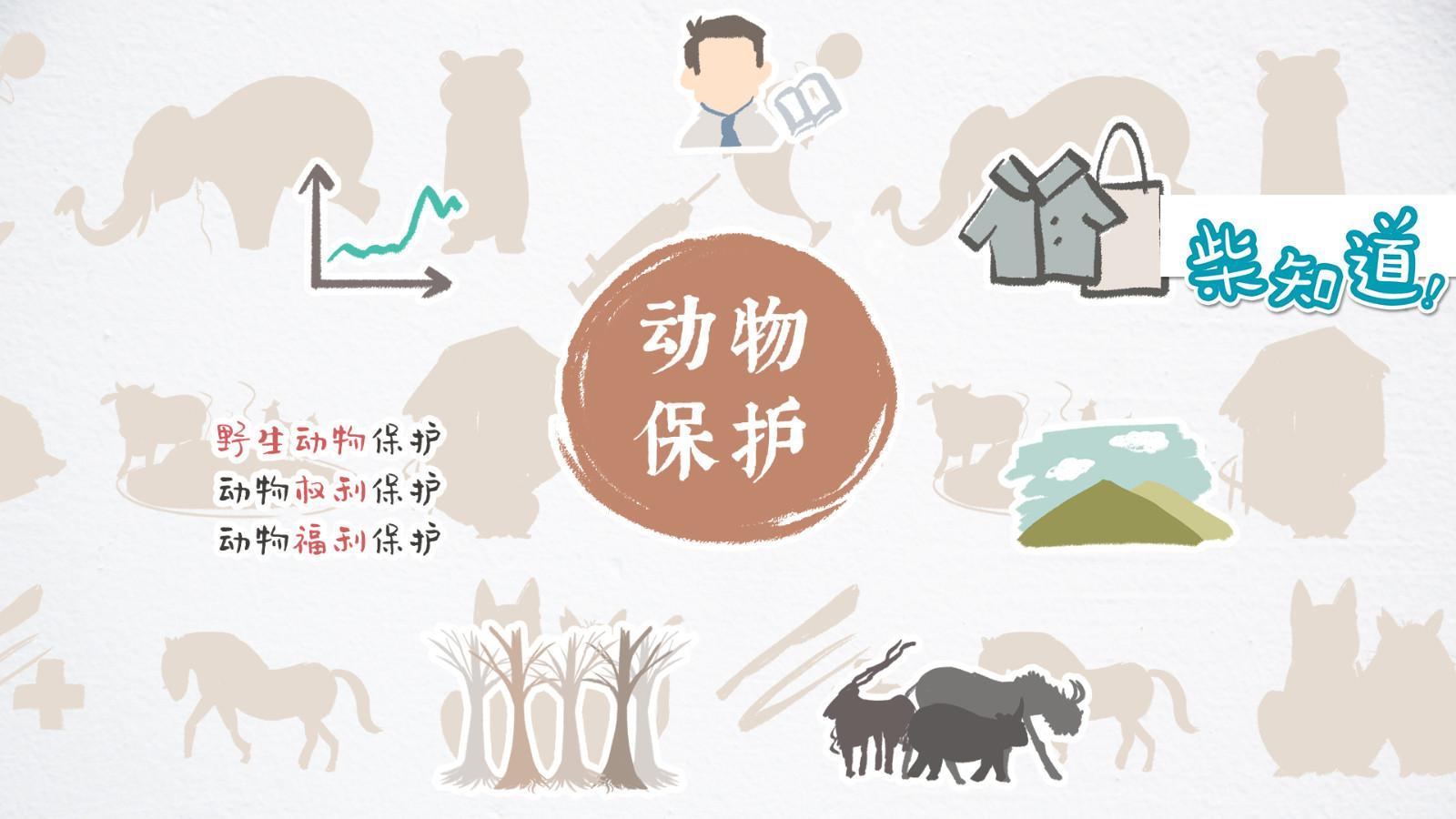 什么是动物保护主义?你知道还远远不够