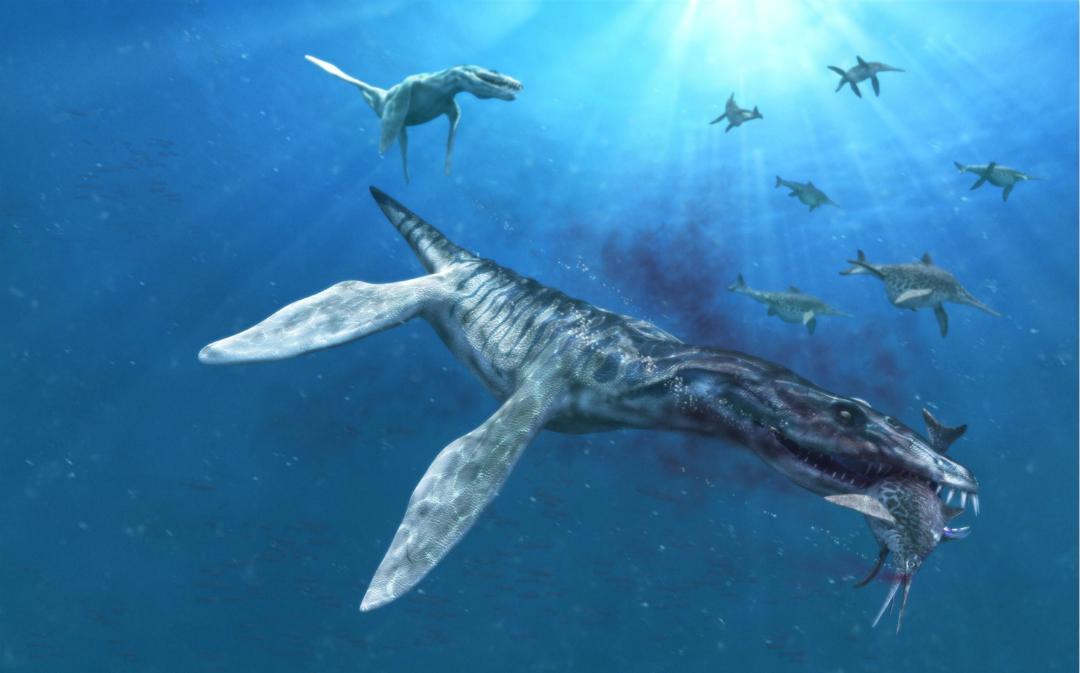 探尋古生物:恐龍時期海洋中無敵的存在,中生代的頂級掠食者圖片