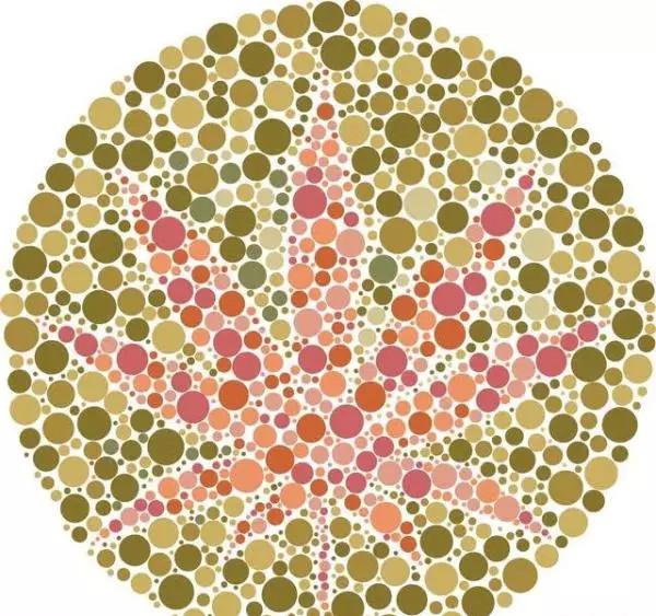 7张色盲色弱测试图,从简单到困难,看看你能看到第几张?