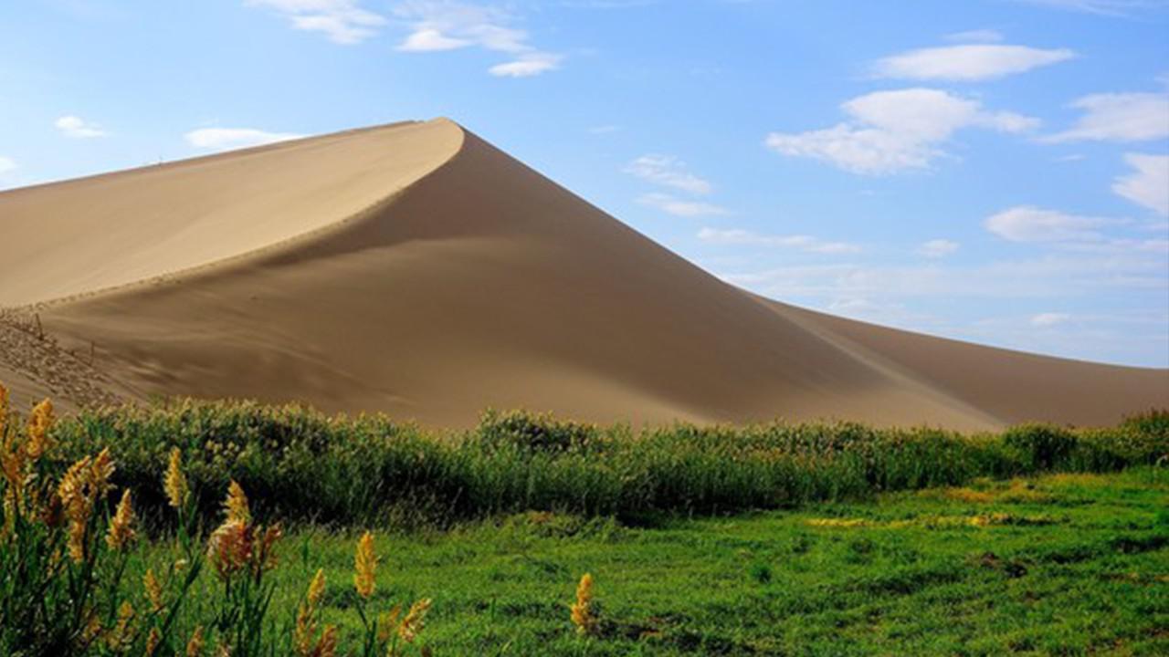 假如塔克拉玛干沙漠变成大森林,会有什么影响?看完大图片