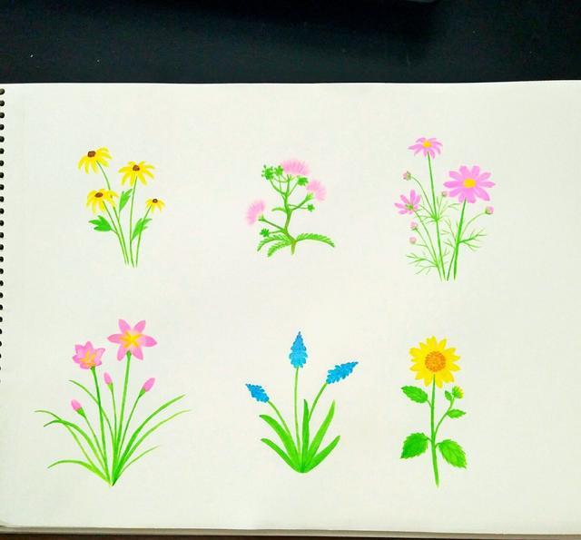 马克笔花卉涂鸦教程