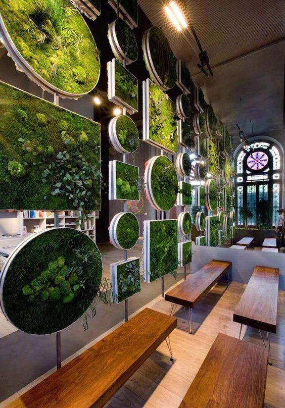 室内景观论+�z+����_室内植物墙