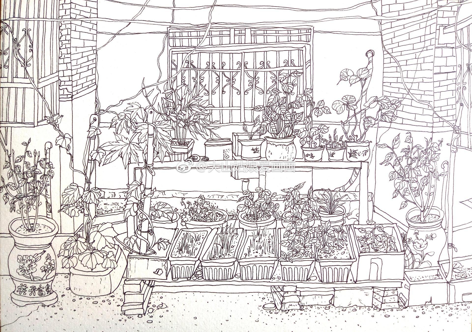 水彩速写 老房子楼下的菜园 投稿 大山姑娘爱画画