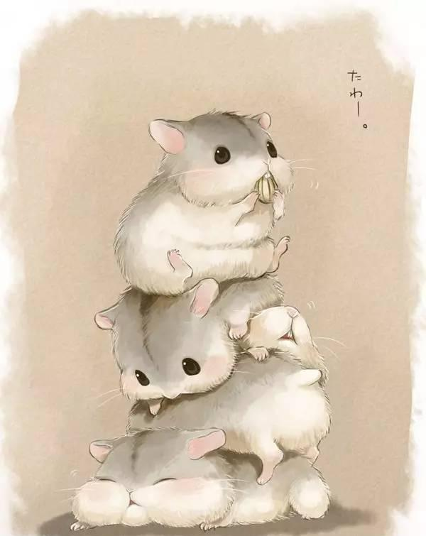 高清无水印壁纸 都是超可爱的卡通版小仓鼠 快快收去做壁纸吧