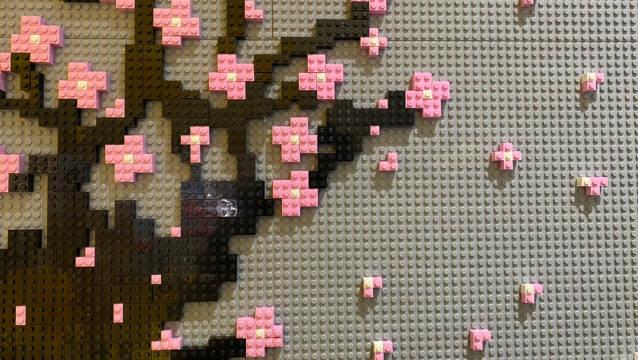 还有一个月,武汉的樱花就盛开了。遥想春风里,樱花粉粉嫩嫩地绽放