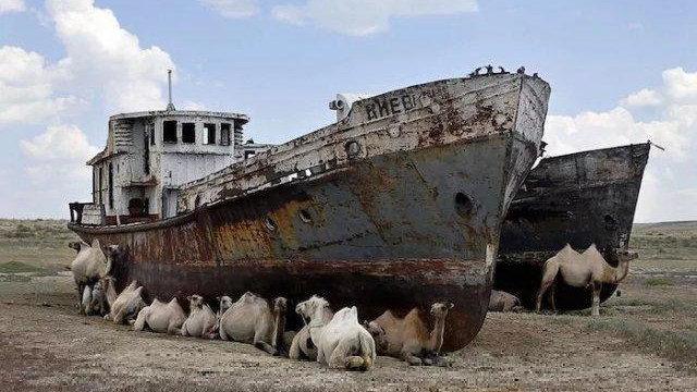 全球最悲催的海军,刚筹钱买完军舰,发现海没了,比蒙古海军还惨
