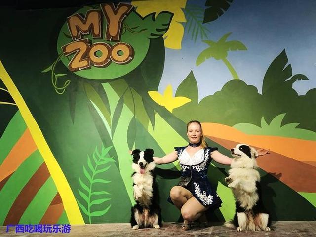 myzoo每天安排外籍演员与动物表演精彩互动节目
