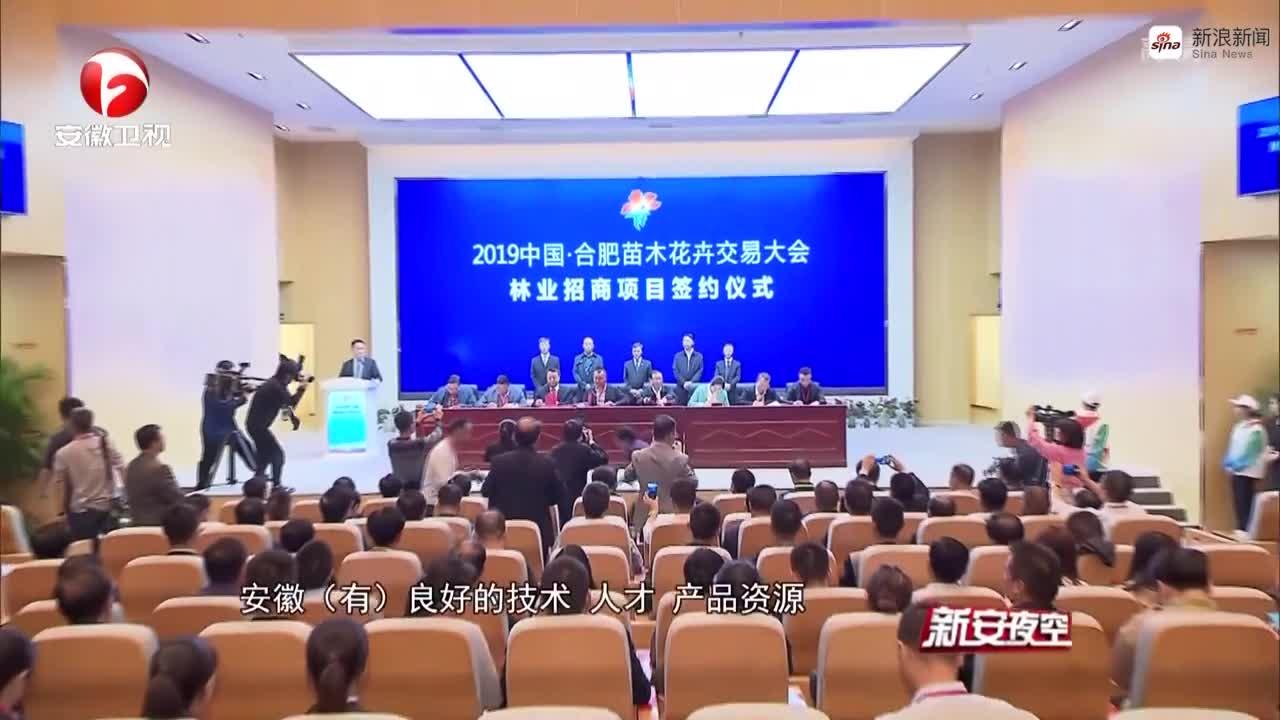 《新安夜空》2019中国·合肥苗木花卉交易大会成功洽谈152个林业招商项目