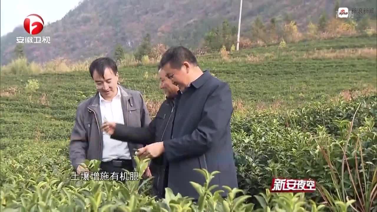 《新安夜空》安徽:强化科学抗旱  保障农业生产