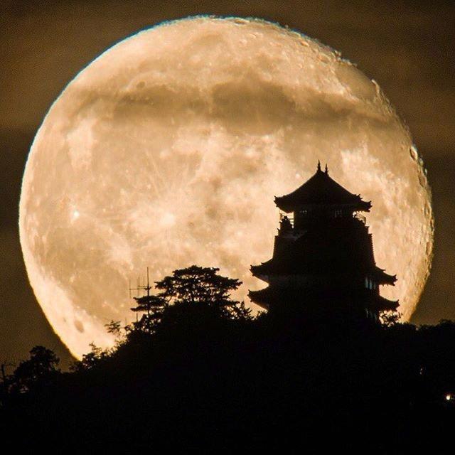 月亮下的日本城堡| 摄影师 晚安