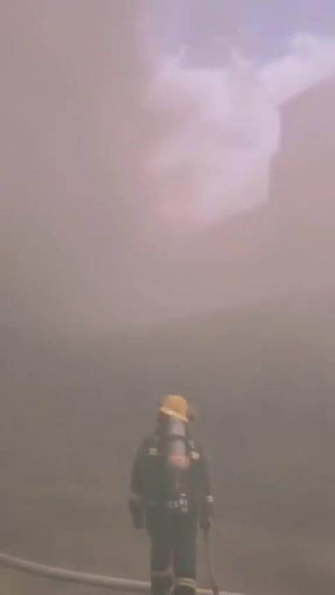 董泽鹏,8·12天津滨海爆炸牺牲的消防员