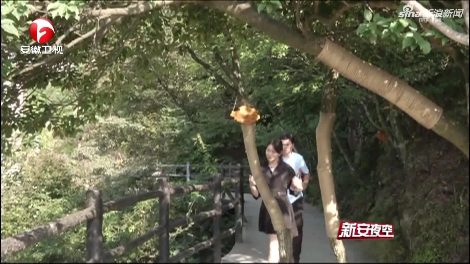 《新安夜空》安徽九华山:小小麻绳  编织旅游安全网