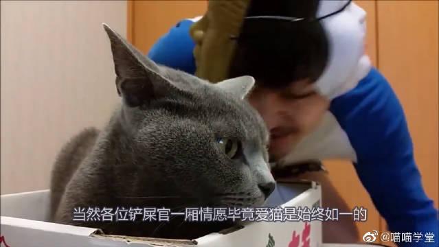 日本大叔在俄罗斯蓝猫铃铛面前跳舞,还想亲吻它,铃铛:不客气了
