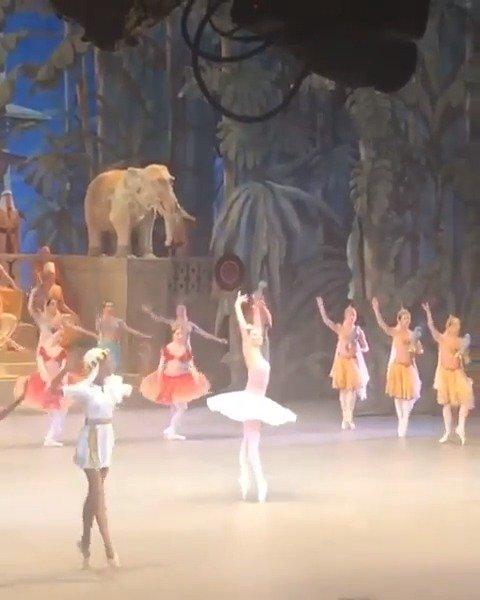 莫斯科大剧院 2019年12月7日 舞姬 二幕大双coda 甘扎蒂公主-Ksenia Z