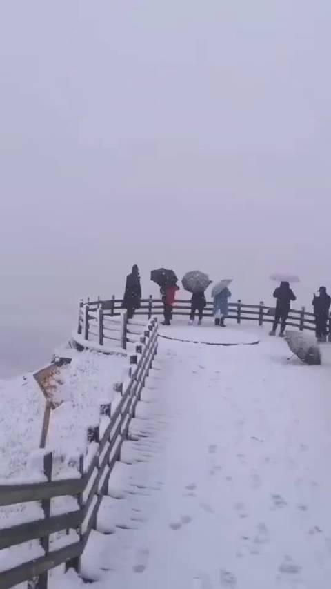 巴音布鲁克下雪了!@新浪旅游