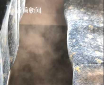男子澳洲坐火车恶心坏 一拍座椅灰尘喷涌如尘暴