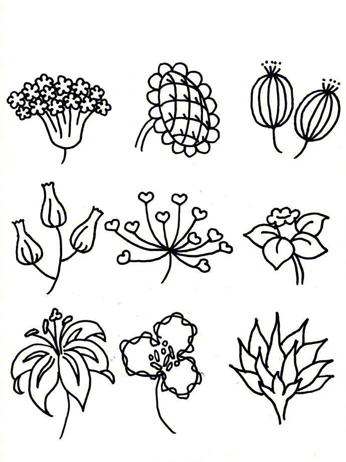 花朵简笔画示例,手绘手帐素材,转给需要的人!