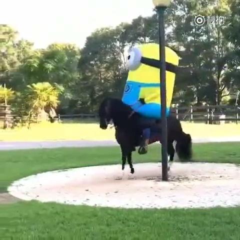 小黄人骑马还自带魔性音效,也就看了10遍吧,到底谁是神经病?