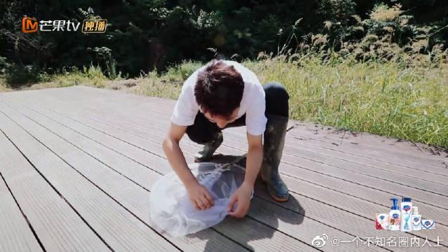 吴刚在线教学吴羽卿抓蜻蜓,你小时候玩过这个吗?