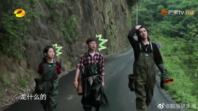 黄磊&何炅&彭昱畅&张子枫