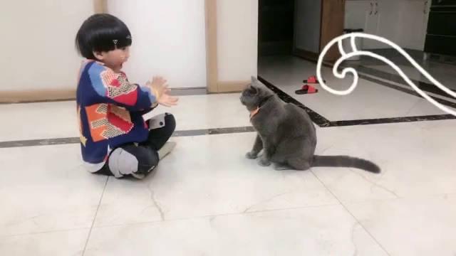 猫:记得给我发个小金人!  红人的诞生