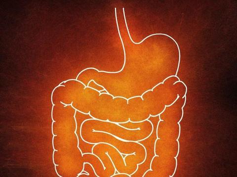 减肥的时候也是调理健康的好时候,肠胃不好的朋友减肥福利来了