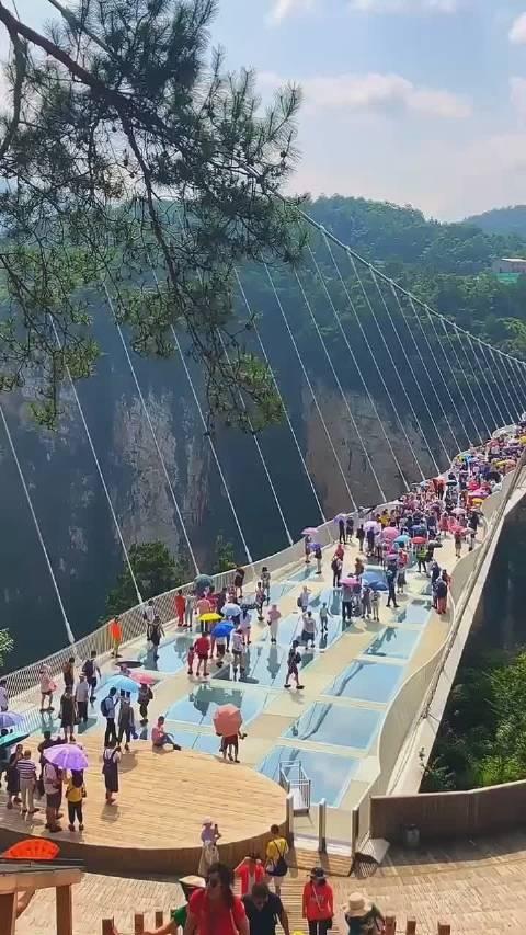 """张家界大峡谷玻璃桥名""""云天渡"""""""