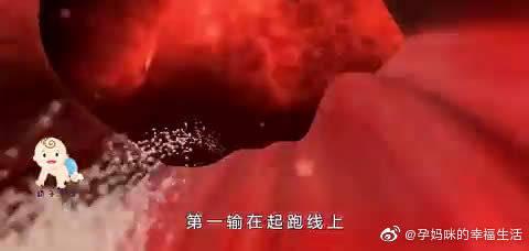 孕期那些跑慢了的精子,在后面是咋解决的,答案说了你可能不信!