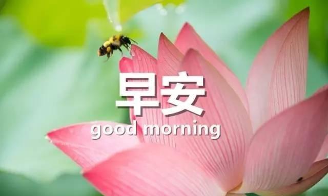 早安心语:欲望从来不是幸福的源,而是一切痛苦的根