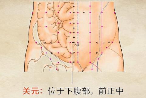 艾灸可以缓解腰椎间盘突出症,适合不会取穴艾友 附:穴位图