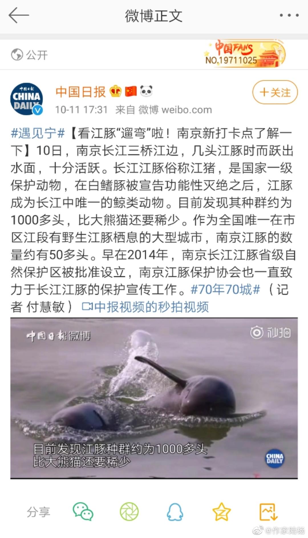 《中国日报》(10月11日) | 长江江豚(国家一级保护动物)种群约为1