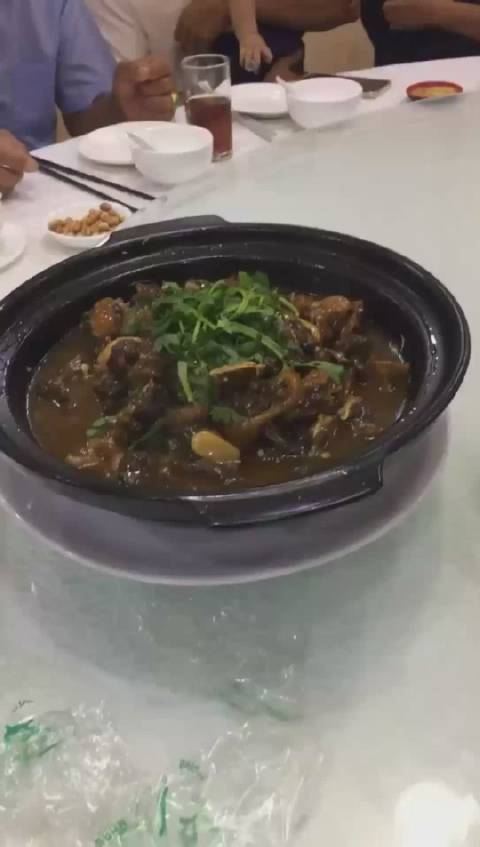 泰国田鼠火锅、红焖田鼠尝尝鲜