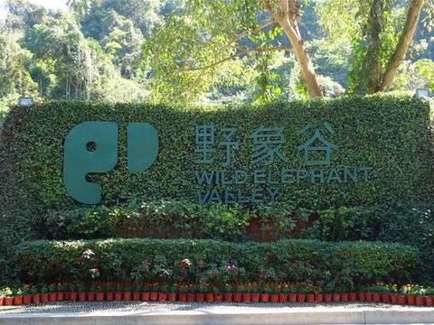 西双版纳亲子自由行,上海出发第三天,野象谷,必去景点