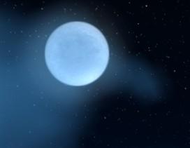 轻松一刻:艾尔文森林的的中秋月圆之夜